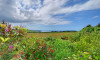 The property backs onto beautiful countryside with sea views