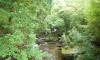 East Lyn River.