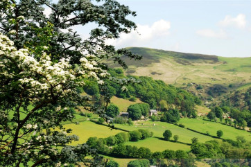 The farm, surrounding the cottage, is attractive at all times of the year